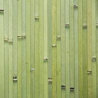 Бамбуковое полотно | 11 мм | зеленый